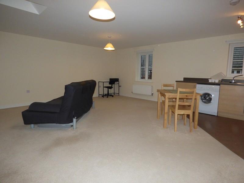 Open Plan Kitchen/Living Room
